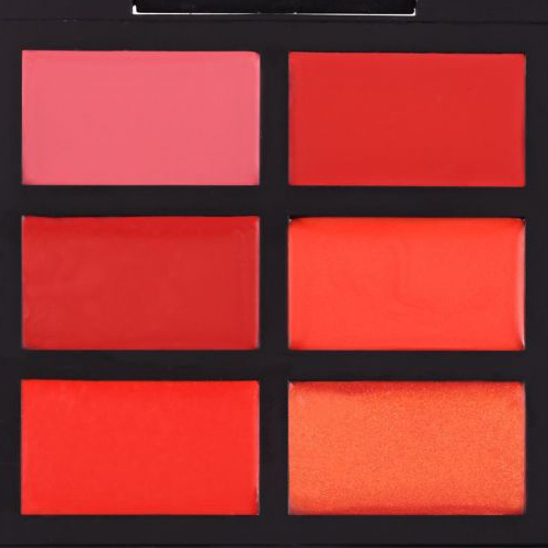 PRO Lip Palette The Glam Shine MC107 فراروسی